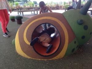 Climbing inside a snail